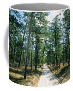 Sand Road Through The Pine Barrens, New Coffee Mug by Skip Brown