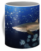 Sand Tiger Shark Swimming In Blue Water Coffee Mug
