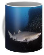 Sand Tiger Shark Swims By The Wreck Coffee Mug