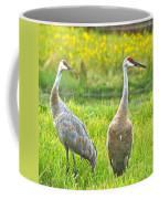 Sandhill Crains 7593 Coffee Mug