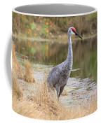 Sandhill Crane Beauty By The Pond Coffee Mug