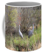 Sandhill Cranes In Colorful Marsh Coffee Mug