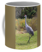 Sandhill In The Grass With Wildflowers Coffee Mug