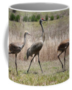 Sandhill Parade Coffee Mug