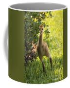 Sandhill Toddler Coffee Mug