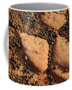Sandstone And Pebbles Coffee Mug by Gary Whitton