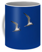 Sandwich Terns Coffee Mug