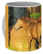 Sandy Eating Hay Coffee Mug
