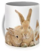 Sandy Rabbit And Babies Coffee Mug