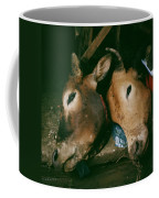 Sapa Market Coffee Mug