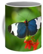 Sara Longwing Coffee Mug