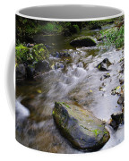 Satus Creek In Autumn Coffee Mug