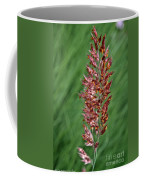 Savannah Ruby Grass Coffee Mug