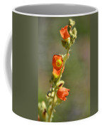 Scarlet Globe-mallow Coffee Mug