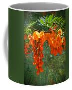 Scarlet Wisteria Tree - Sesbania Punicea Coffee Mug