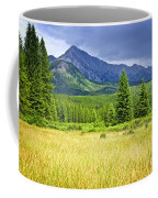 Scenic View In Canadian Rockies Coffee Mug by Elena Elisseeva
