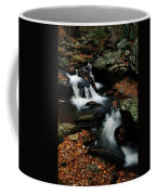 Scenic View Of A Waterfall On Smith Coffee Mug