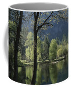 Scenic View Of The Merced River Coffee Mug