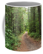 Scenic Walk Coffee Mug