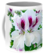 Scented Geraniums 2 Coffee Mug