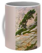 Schoodic Cliffs Coffee Mug
