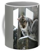 Scratching An Itch Coffee Mug