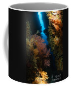 Sea Fans, Fiji Coffee Mug