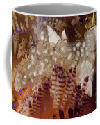 Sea Snails Laying Eggs On Top Of A Fire Coffee Mug