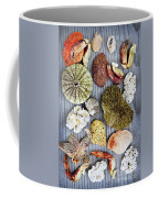 Sea Treasures Coffee Mug