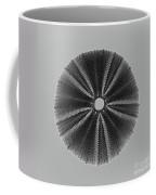 Sea Urchin 1 Coffee Mug