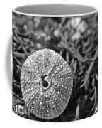 Sea Urchin On Seaweed Coffee Mug by David Rucker