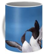 Seabird Love Coffee Mug