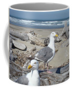 Seagull Bird Art Prints Coastal Beach Bandon Coffee Mug