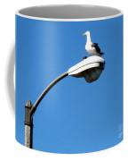 Seagull On Street Light Coffee Mug