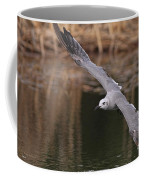 Seagull Seagull On The Move Coffee Mug