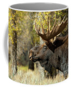 Searching For The Competition Coffee Mug