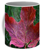 Seasonal Changes Coffee Mug