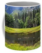 Seasonal Duck Pond Coffee Mug