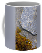 Seaweed And Boulder Coffee Mug
