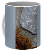 Seaweed And Rock Coffee Mug