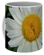 Seeing Coffee Mug