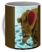 Sem Of A Mutant Fruit Fly Coffee Mug