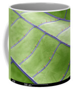 Sem Of Dragonfly Wing Coffee Mug
