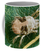 Sem Of Two-spotted Spider Mite Coffee Mug