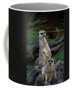 Sentry Coffee Mug by Skip Willits