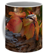 Shade In Fall Coffee Mug