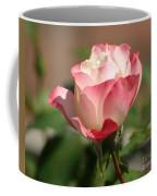 Shades Of Pink Coffee Mug