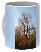 Shadow Cliff Tree Coffee Mug