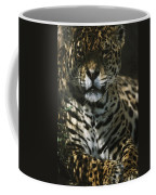 Shadows Flicker Over A Jaguar Panthera Coffee Mug by Hope Ryden