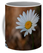 Shasta Daisies Coffee Mug